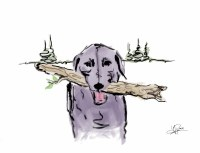 Dog with a Branch Card