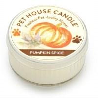 Pumpkin Spice Mini Candle