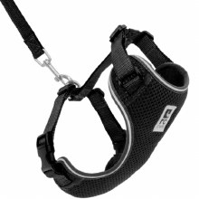 Adventure Kitty Harness, Black, Large