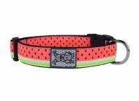 Clip Collar, Watermelon, Medium