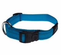 Collar, Large (Fanbelt), Turquoise