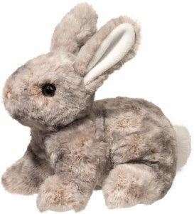 Douglas Tyler Gray Bunny