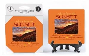 SJT Enterprises Advise From A Sunset Coaster