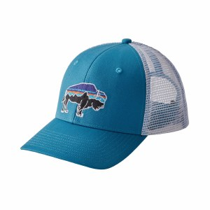 Patagonia Fitz Roy Bison Trucker Hat One Size Lumi Blue