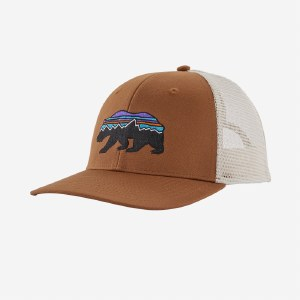 Patagonia Fitz Roy Bear trucker Cap  OS Earthworm Brown