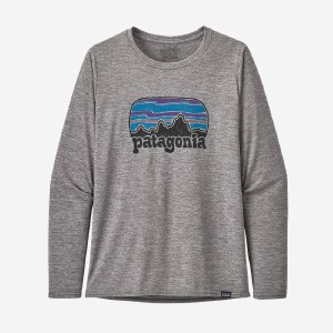 Patagonia Women's Long-Sleeved Capilene Cool Daily Graphic Shirt M Fitz Roy Far Out: Feather Grey