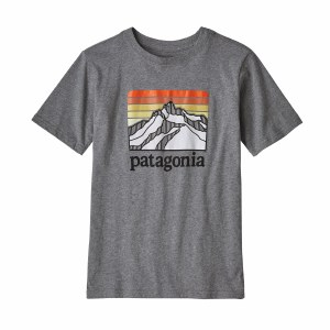 Patagonia Boy's Graphic Organic Cotton T-Shirt Medium Line Logo Ridge: Gravel Heather