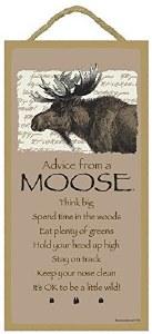 """SJT Enterprises Advise From A Moose 5""""x10"""""""