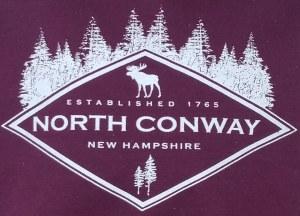Luba Designs Diamond New Hampshire Youth S/S Tee Large Maroon