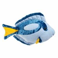 Douglas Blue Tang Fish