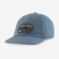 Patagonia Back For Good Trad Cap OS Plume Grey Wolf