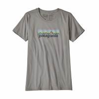 Patagonia Women's Pastel P-6 Logo Cotton Crew X-Large Feather Grey