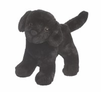 Douglas Abraham Black Lab