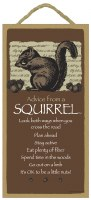 """SJT Enterprises Advise From A Squirrel Sign 5""""x10"""""""