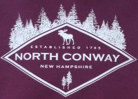 Luba Designs Diamond New Hampshire Youth S/S Tee X-Small Maroon