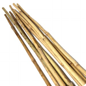 Bamboo Canes 7ft  8 Pack
