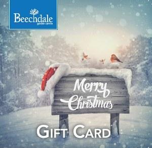 BGC Gift Card Christmas €50