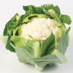 Cauliflower Boris F1Hybrid