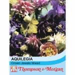 Aquilegia x hybrida 'Crown Jewels Mixed'