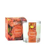 Autumn Leaves Gift Boxed Tumbler Candle