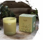 Herb Daisies Boxed Candles