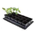 Professional Vegetable Tray Set