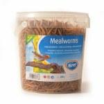 Mealworm Munch Tub 1L