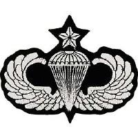 Ptch - ARMY,PARA,WINGS,SR