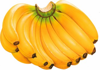 Ripe Banana - Sold by Weight - Pound