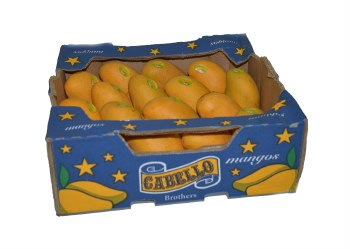 CABELLO ATULPHO MANGO BOX 18 COUNT (SOLD BY BOX)