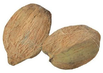 Dry Coconut - Sold by Piece