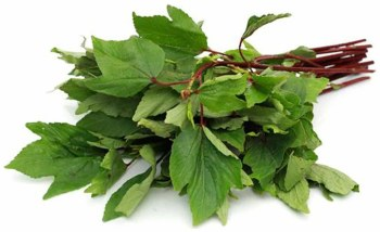 Fresh Gongura Leaves - Sold by Bunch