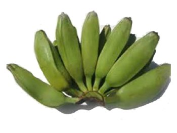 Fresh Burro Banana (Sold by Weight - Pound)