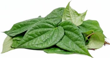 Fresh Paan Leaves - Beetlenut Leaves - Sold by Piece