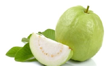 FRESH GUAVA - SOLD BY WEIGHT (LB)