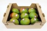 Kent  Mango Box 8 Count
