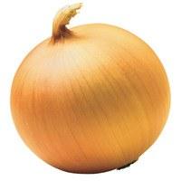 Yellow Onions Med/jumbo