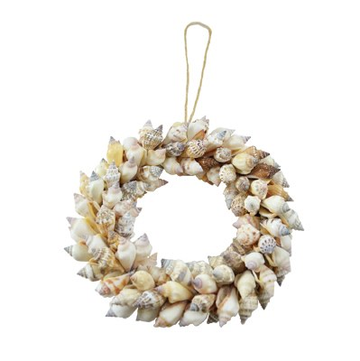 """8"""" Brown Chula Shell Candle Ring"""