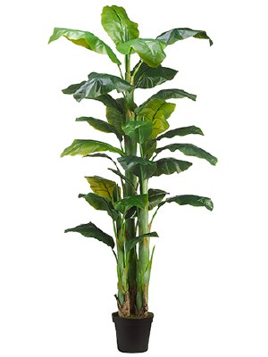 "90"" Green Artificial Banana Tree in Black Pot"