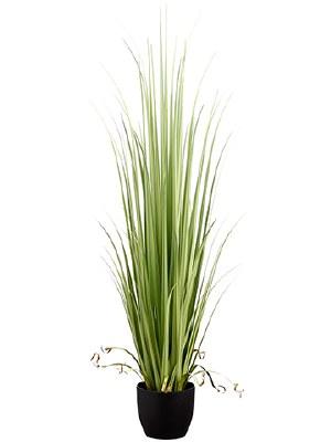 """60"""" Light Green Artificial Reed Grass in Black Pot"""