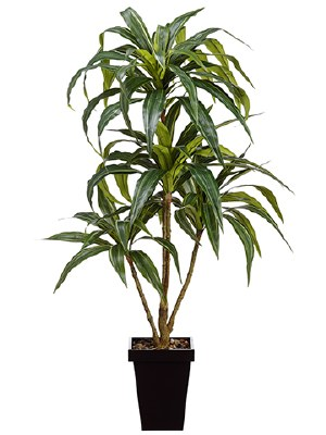 "48"" Potted Faux Dracena"