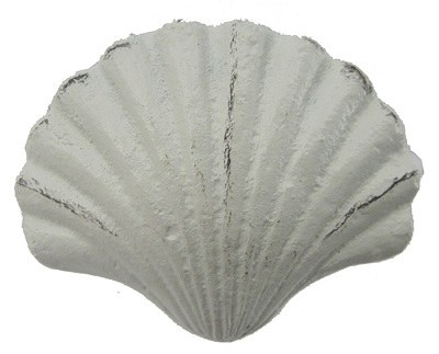 """3"""" Distressed White Metal Finish Scallop Drawer Pull"""