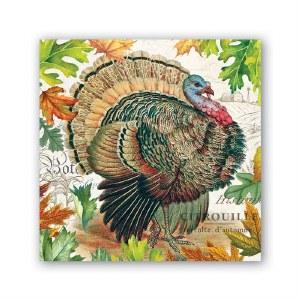 5 x 5 Fall Turkey Harvest Beverage Napkin