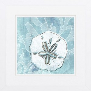 "19"" Square White and Gold Sand Dollar On Blue Framed Print"