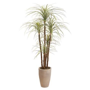 """70"""" Gray and Green Dracaena Potted"""