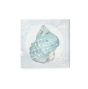 "16"" Square Turquoise Turbo Shell With Sea Saying Canvas"