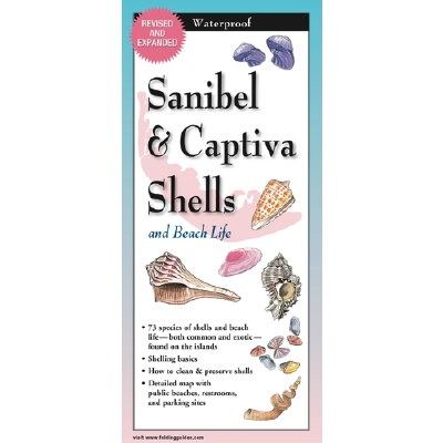 "9"" Sanibel and Captiva Shells and Beach Life Folding Laminated Guide"