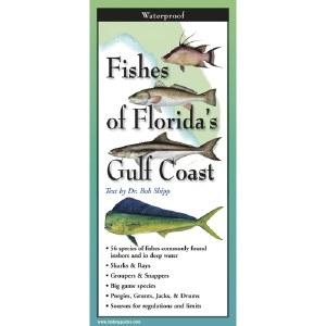"9"" Fishes of Florida's Gulf Coast Folding Laminated Guide"
