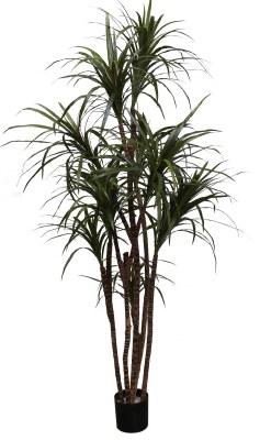 "60"" Potted Artificial Dracena Marginata Tree"