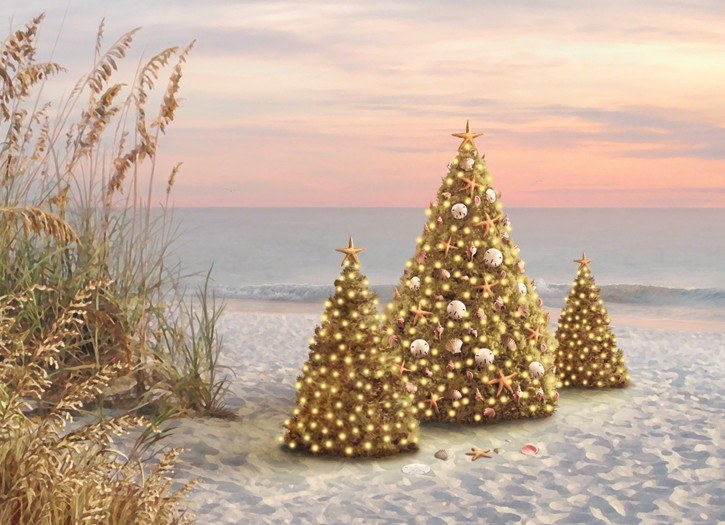 Beach Christmas Cards >> 6 X 8 Box Of 18 Beach Christmas Tree Trio Christmas Greeting Cards